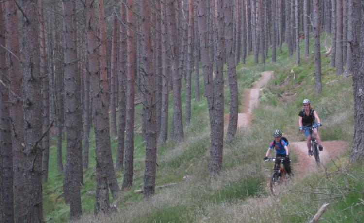 mountain-bike-place0565